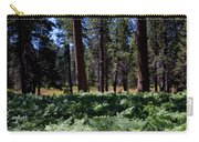 Bluff Lake Ca Fern Forest 4 Carry-all Pouch