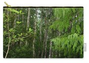 Boardwalk Through The Bald Cypress Strand Carry-all Pouch