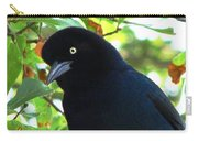 Boat Tailed Grackle Close Up Carry-all Pouch