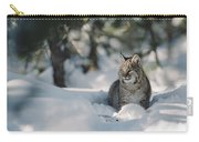 Bobcat Lynx Rufus Adult Resting In Snow Carry-all Pouch by Michael Quinton