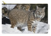 Bobcat Lynx Rufus In The Snow Carry-all Pouch by Matthias Breiter