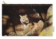 Bobcat Lynx Rufus Portrait On Rock Carry-all Pouch