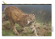 Bobcat Stalking North America Carry-all Pouch by Tim Fitzharris