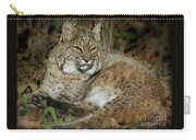 Bobcat Warming In The Autumn Sun Carry-all Pouch