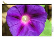 Bohemian Morning Glory Carry-all Pouch