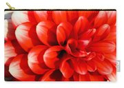 Bold And Beautiful Carry-all Pouch