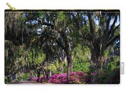 Bonaventure Cemetery IIi Carry-all Pouch