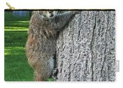 Boston Common Squirrel Hanging From A Tree Boston Ma Carry-all Pouch