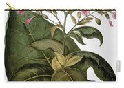 Botany: Tobacco Plant Carry-all Pouch