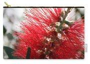 Bottlebrush Closeup Carry-all Pouch