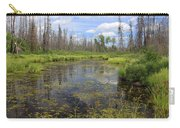 Boundary Waters Beauty Carry-all Pouch