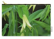 Bountiful Bellwort Carry-all Pouch