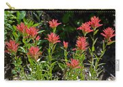 Bouquet Of Paintbrushes Carry-all Pouch