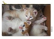 Box Full Of Kittens Carry-all Pouch by Garry Gay