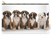 Boxer Puppies Carry-all Pouch by Mark Taylor