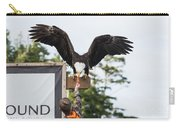 Boy Feeds Mr. Bald Eagle Carry-all Pouch