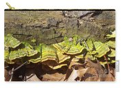 Bracket Fungus Carry-all Pouch