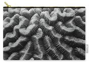 Brain Coral Details Carry-all Pouch