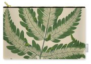 Brake Fern Carry-all Pouch
