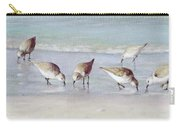 Breakfast On The Beach, Snowy Plover Sandpipers, Siesta Key, Wide-narrow Carry-all Pouch