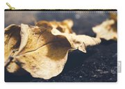 Breaks Of Autumn Carry-all Pouch
