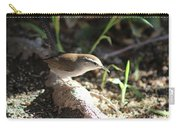 Breswick Wren On Tree Root 2 Carry-all Pouch