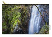 Bridal Veil  Falls 3 Carry-all Pouch