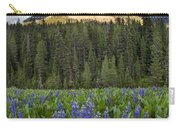 Bridger Teton National Forest Carry-all Pouch