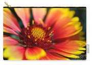 Bright Blanket Flower Carry-all Pouch