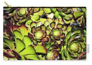 Bright Succulents Carry-all Pouch