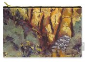 Brilliance At Service Creek Steamboat Springs Colorado Carry-all Pouch
