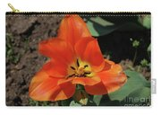 Brilliant Orange Tulip Flower Blossom Blooming In Spring Carry-all Pouch