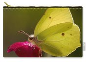 Brimstone 2 Carry-all Pouch