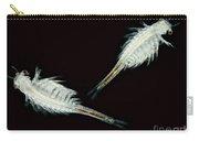 Brine Shrimp, Artemia Salina, Lm Carry-all Pouch