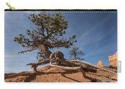 Bristle Cone Tree Carry-all Pouch