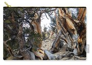 Bristlecone Forest, Ca November 2105 Carry-all Pouch