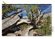 Bristlecone Great Basin Landscape Carry-all Pouch