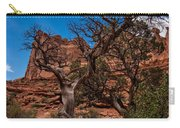 Bristlecone On Park Avenue Carry-all Pouch