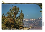 Bristlecone Pine  Carry-all Pouch