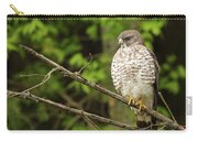 Broad Winged Hawk On The Lookout Carry-all Pouch
