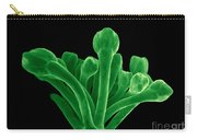 Broccoli, Esem Carry-all Pouch