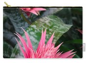 Bromeliad Plant 3 Carry-all Pouch