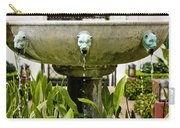 Bronze Civit Head Fountain Carry-all Pouch