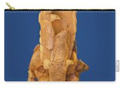 Brother, Carved Out Of A Dead Tree By Scott Alan Malinsky In Twin Lakes, Colorado   Carry-all Pouch