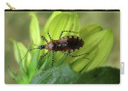 Brown Insect Carry-all Pouch