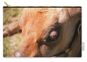 Brown Cow 2 Carry-all Pouch