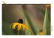 Brown Eed Susans By Red Bard Carry-all Pouch