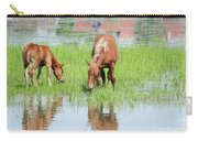 Brown Horse And Foal Nature Spring Scene Carry-all Pouch