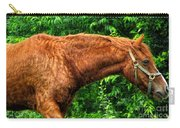 Brown Horse In High Definition Carry-all Pouch