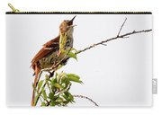 Brown Thrasher - I Am Here Carry-all Pouch